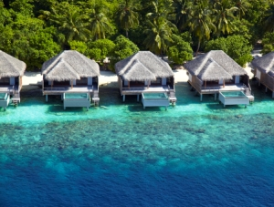 The Maldives Honeymoons